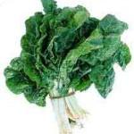 epinard-spinacio