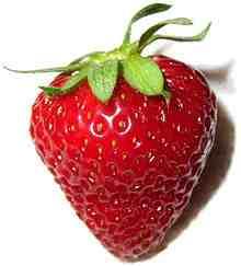 fraise-fragola
