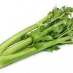 celeri-sedano